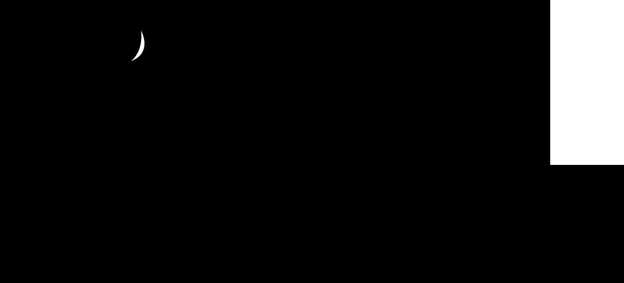 Nevi Koeva